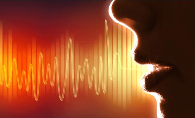 ¿Es válida la identificación de una persona a través de la voz